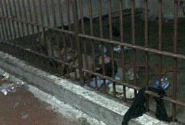 Carceri thailandesi